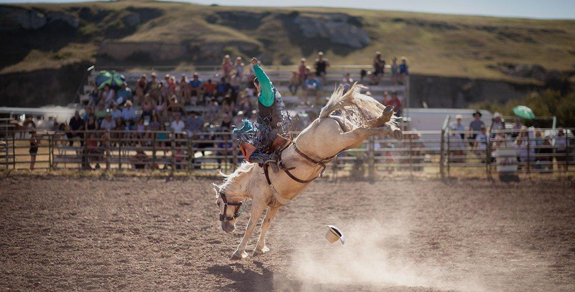 © Calgary Stampede