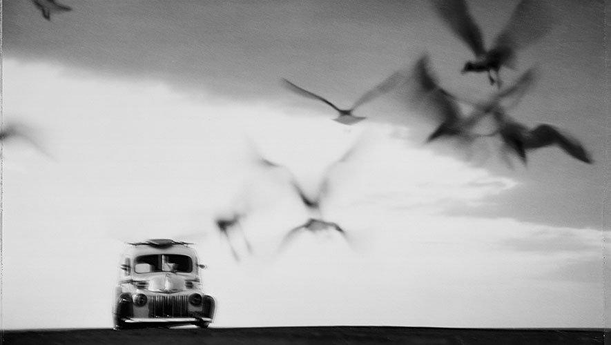 © Hartmut Ahlers